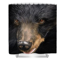 Trixie Moon Bear - In Support Of Animals Asia Shower Curtain by David Stribbling