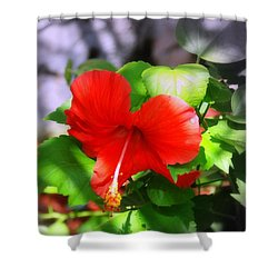 Tropical Burst Shower Curtain