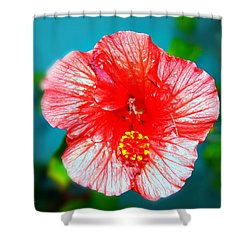 Tropical Burst Redux Shower Curtain