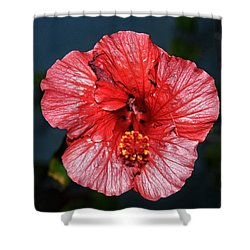 Tropical Burst Subdued Shower Curtain
