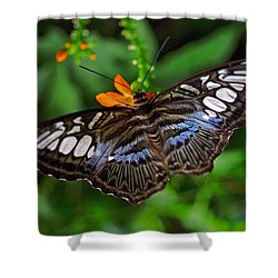 Shower Curtain featuring the photograph Tropical Butterfly by Marie Hicks