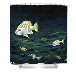 Tropical Fish Shower Curtain by Anastasiya Malakhova
