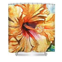 Tropical Hibiscus 3 Shower Curtain