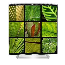 Tropical Leaves Shower Curtain by Art Block Collections