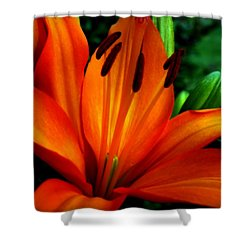 Tropical Passion Shower Curtain by Karen Wiles