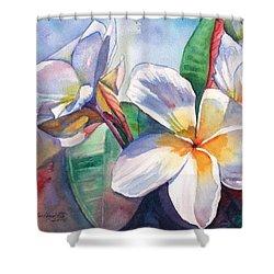 Tropical Plumeria Flowers Shower Curtain