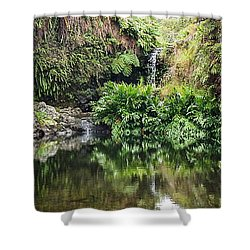 Tropical Reflections Shower Curtain by Denise Bird