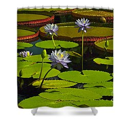 Tropical Water Lily Flowers And Pads Shower Curtain by Byron Varvarigos