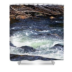 Shower Curtain featuring the photograph Trout River by Jackie Carpenter