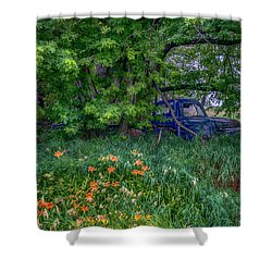 Truck In The Forest Shower Curtain by Paul Freidlund