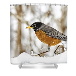 Trucking Shower Curtain
