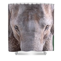 Shower Curtain featuring the photograph Truncated by Dyle   Warren