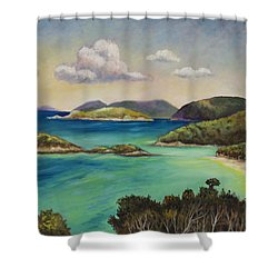 Trunk Bay Overlook Shower Curtain by Eve  Wheeler
