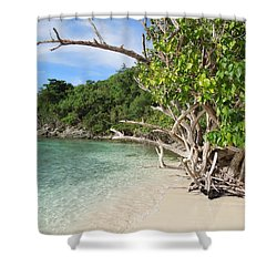 Shower Curtain featuring the photograph Trunk Bay St. John Usvi by Jodi Terracina