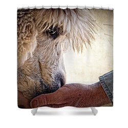 Trust Shower Curtain by Tamyra Ayles