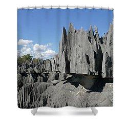 Tsingy De Bemaraha Madagascar 2 Shower Curtain by Rudi Prott