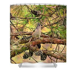 Tufted Titmouse Shower Curtain by Deena Stoddard