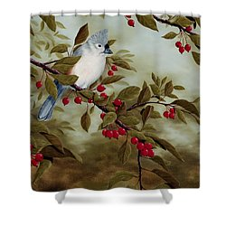 Tufted Titmouse Shower Curtain by Rick Bainbridge