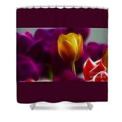 Tulip-6983 Shower Curtain by Gary Gingrich Galleries