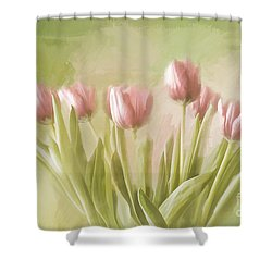 Tulip Bouquet Shower Curtain by Linda Blair