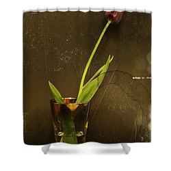 Tulip  Shower Curtain by Chris Berry