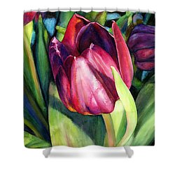 Tulip Delight Shower Curtain