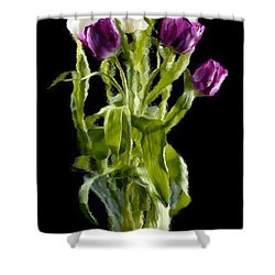 Tulip Impressions IIi Shower Curtain by Penny Lisowski