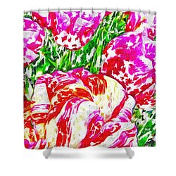 Tulip Infusion Shower Curtain by Zafer Gurel
