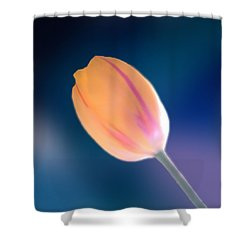 Tulip Shower Curtain by Marcin and Dawid Witukiewicz