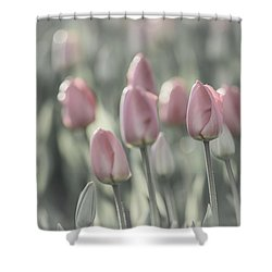 Tulip Patch Shower Curtain