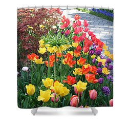 Tulip Path Shower Curtain