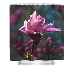 Tulip Tree Blossom Shower Curtain by Sandi OReilly