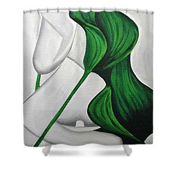 Tulips 1 Shower Curtain