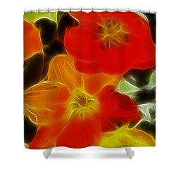 Tulips-6681-fractal Shower Curtain by Gary Gingrich Galleries