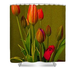 Tulips Against Green Shower Curtain