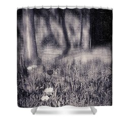 Tulips And Tree Shadow Shower Curtain by Silvia Ganora