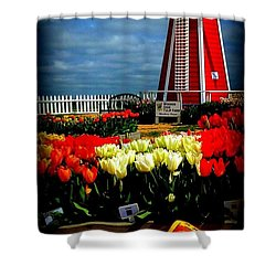 Tulips And Windmill Shower Curtain by Susan Garren