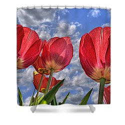 Shower Curtain featuring the photograph Tulips Are Better Than One by Paul Wear