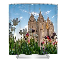 Tulips At The Temple Shower Curtain by Dustin  LeFevre
