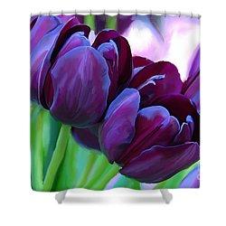 Tulips-dark-purple Shower Curtain