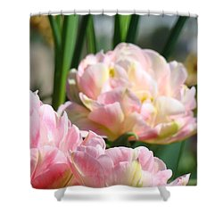Tulips Flowers Garden Art Prints Pink Tulip Floral Shower Curtain by Baslee Troutman
