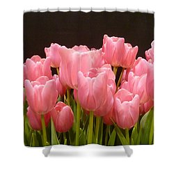 Shower Curtain featuring the photograph Tulips In Bloom by Lingfai Leung