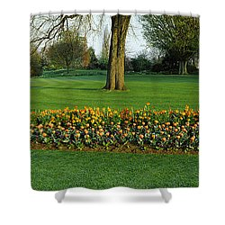 Tulips In Hyde Park, City Shower Curtain