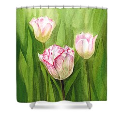 Tulips In The Fog Shower Curtain