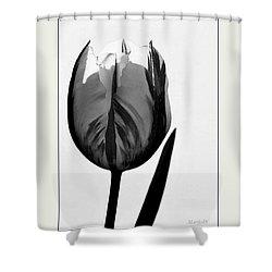 The Light Within Shower Curtain by Marija Djedovic