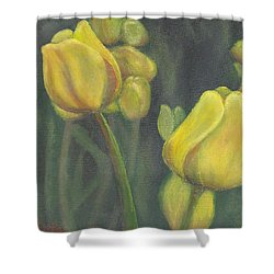 'tulips Stand' Shower Curtain