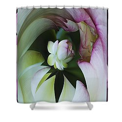 Tunnel Of Lotus Shower Curtain by Jean Noren