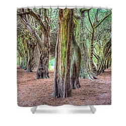 Tunnels Of The Intertwined Shower Curtain by Semmick Photo