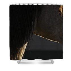 Tupelo Shower Curtain
