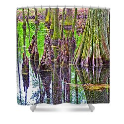 Tupelo/cypress Swamp Reflection At Mile 122 Of Natchez Trace Parkway-mississippi Shower Curtain by Ruth Hager